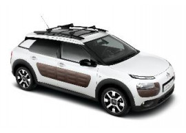citroen-c4-cactus-roof-base-carriers-for-models-with-dakreling-1610033180