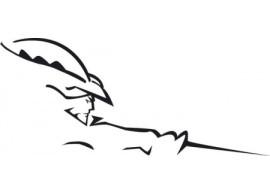 musketier-citroen-c4-decor-sticker-C4S38040