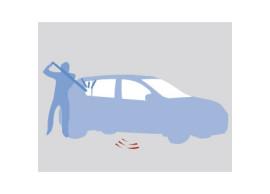 6001998204 Dacia Sandero 2008 - 2012 alarm with remote control